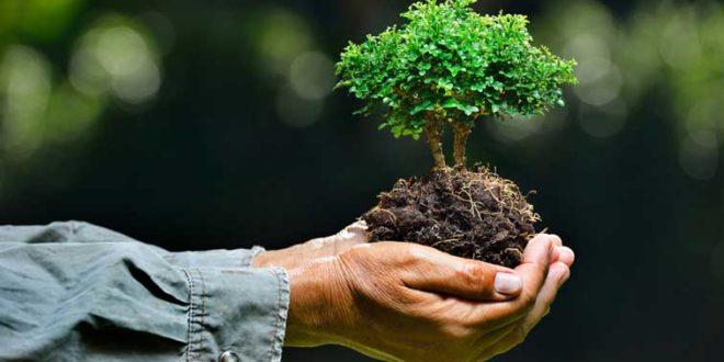 Logística Reversa: uma atitude sustentável